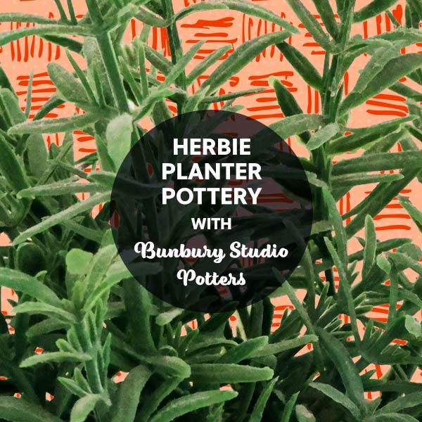 SHP2 Herbie Planter Pottery with Bunbury Studio Potters